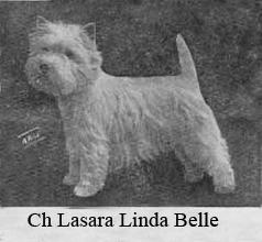 Чемпион Ласара Линда Бель