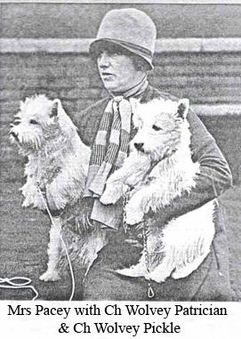 Миссис Пасей с чемпионами Волви Патрициан и Пикл